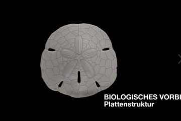 Landesgartenschau_Exhibition_Hall_on_Vimeo